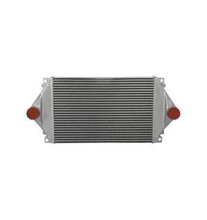Volvo Wg Series 96-01 Charge Air Cooler OEM: 219010004